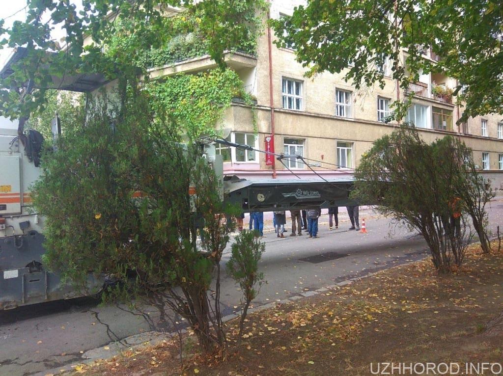 Бруківка в Ужгороді фото 5
