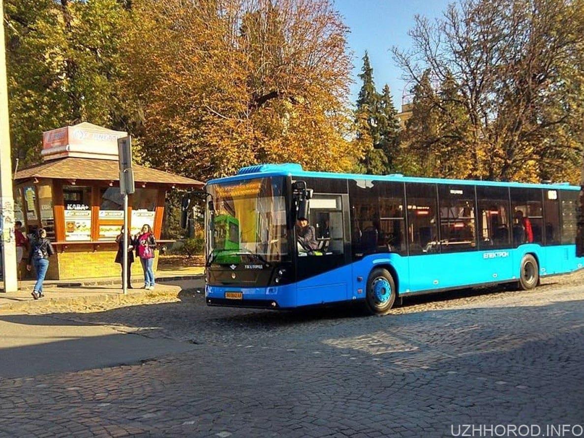 автобус 20 фото