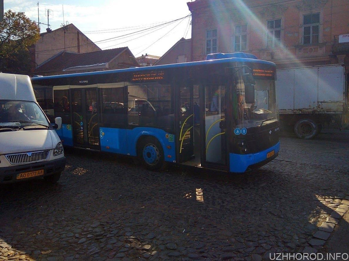 автобус 20-2 фото