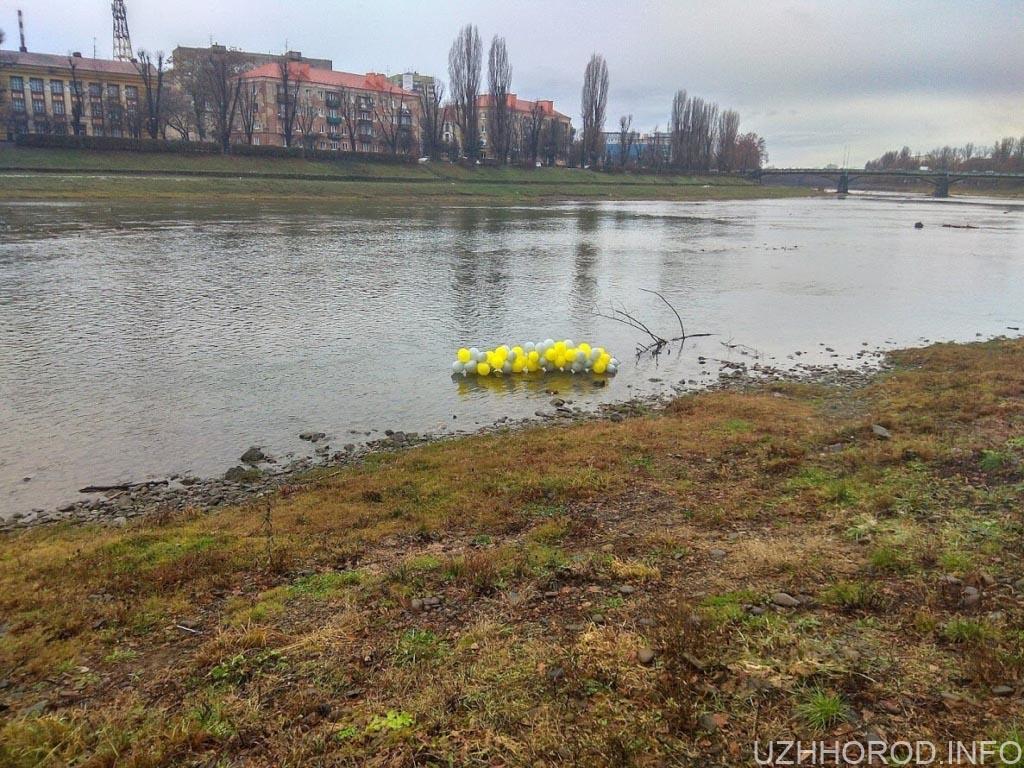 Сміття ужгородські лебеді фото