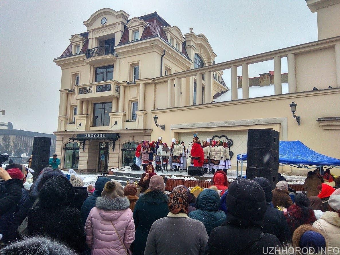 Вертепне дійство в Ужгороді (ВІДЕО).