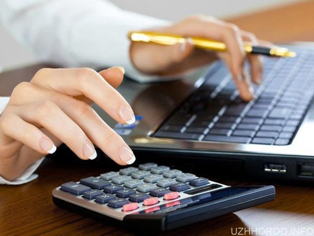 Податківці розповіли про послуги, які надають