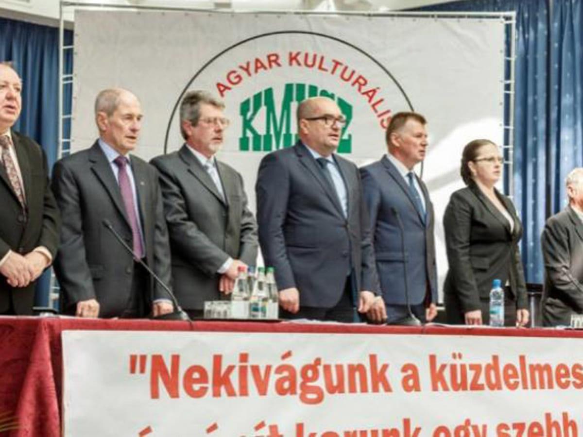 закарпатські угорці протестують фото