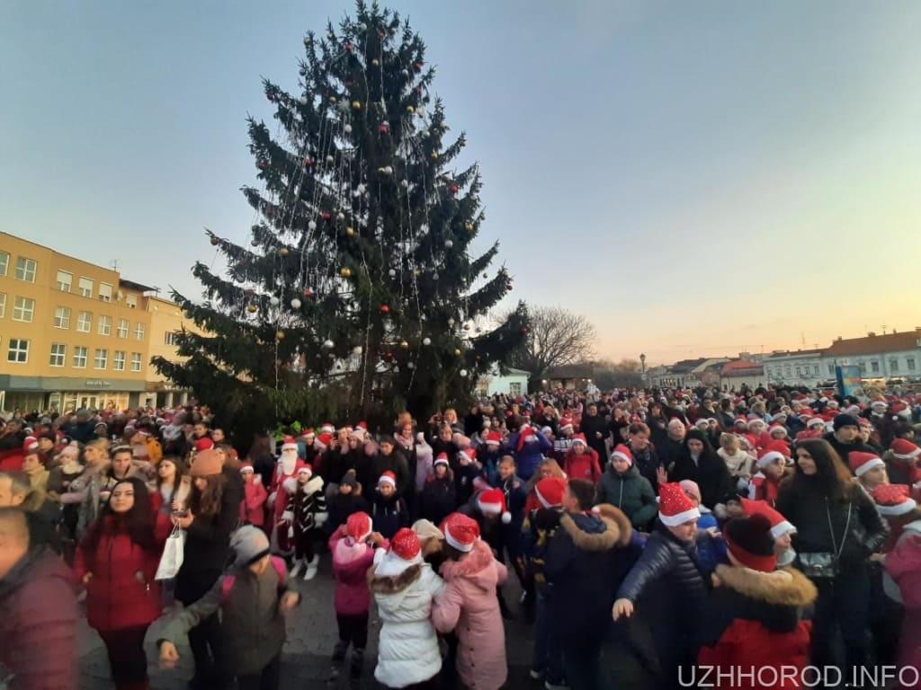 парад Миколайчиків вчора фото