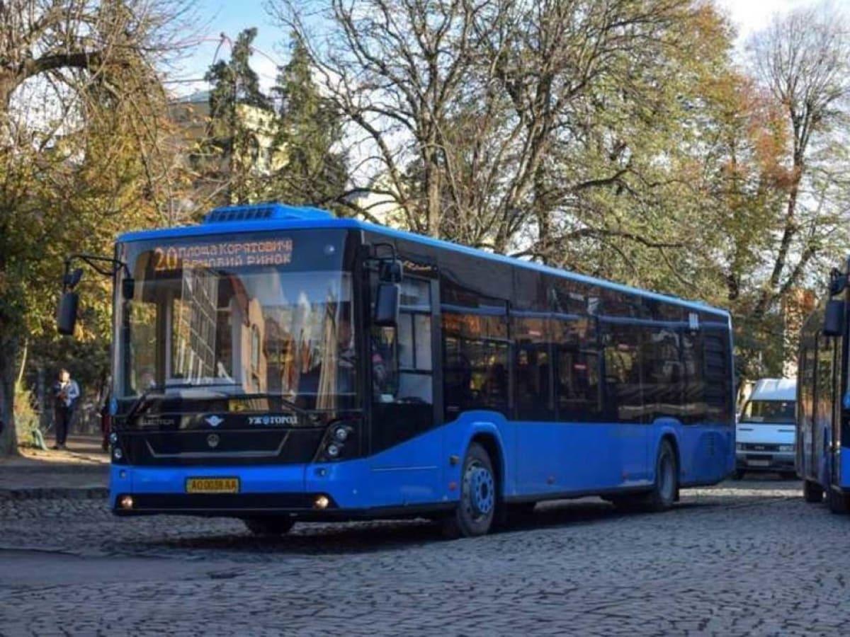 автобус 20 визначено переможця фото