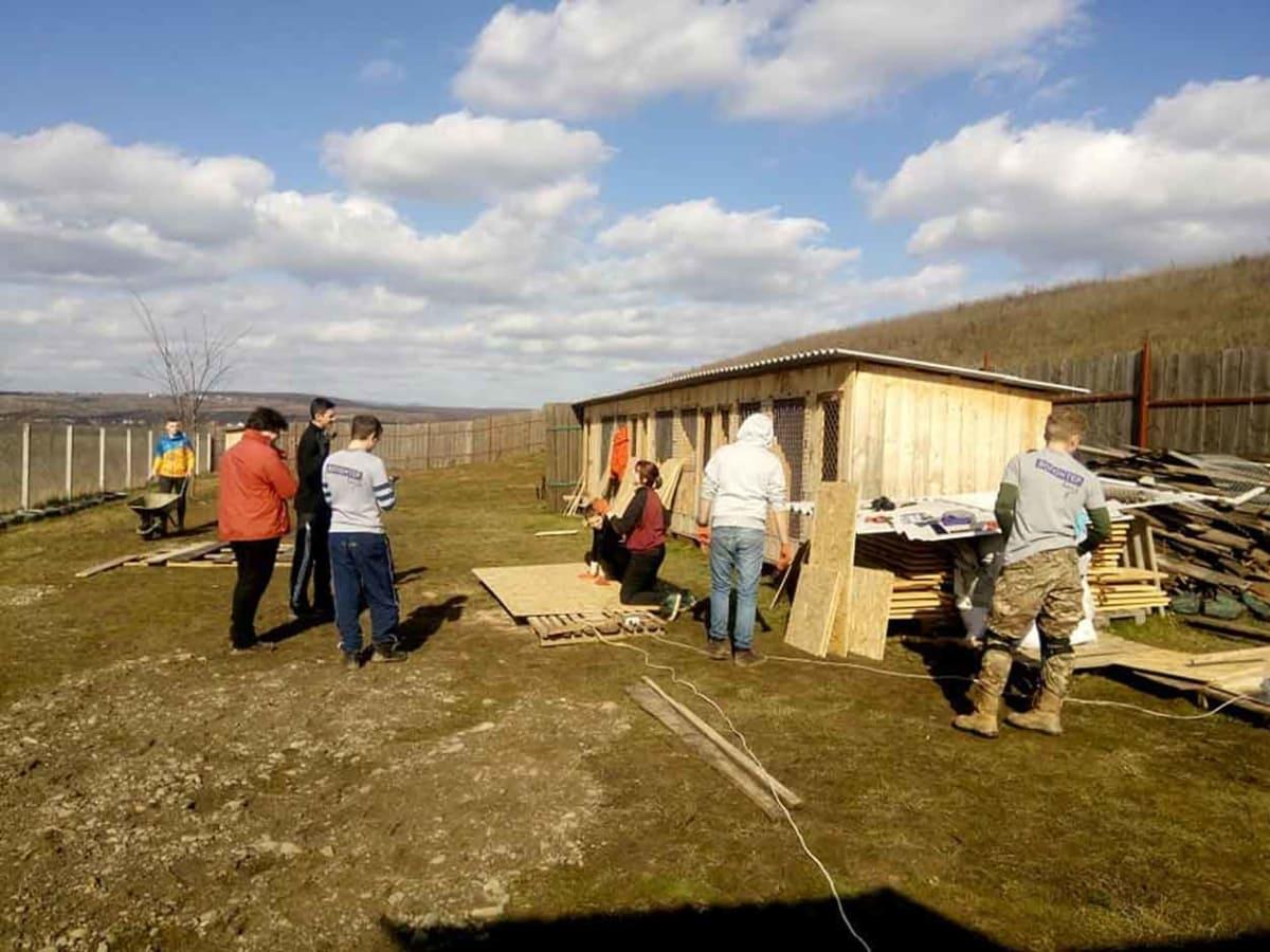 Ужгородські зоозахисники побудували притулок для тварин фото