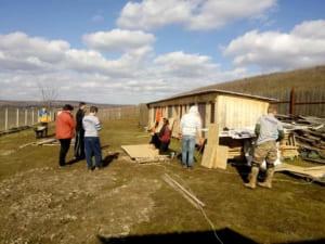 Ужгородські зоозахисники побудували притулок для тварин