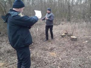 В Ужгороді, в міському парку, невідомі вирізали 19 дерев: триває розслідування