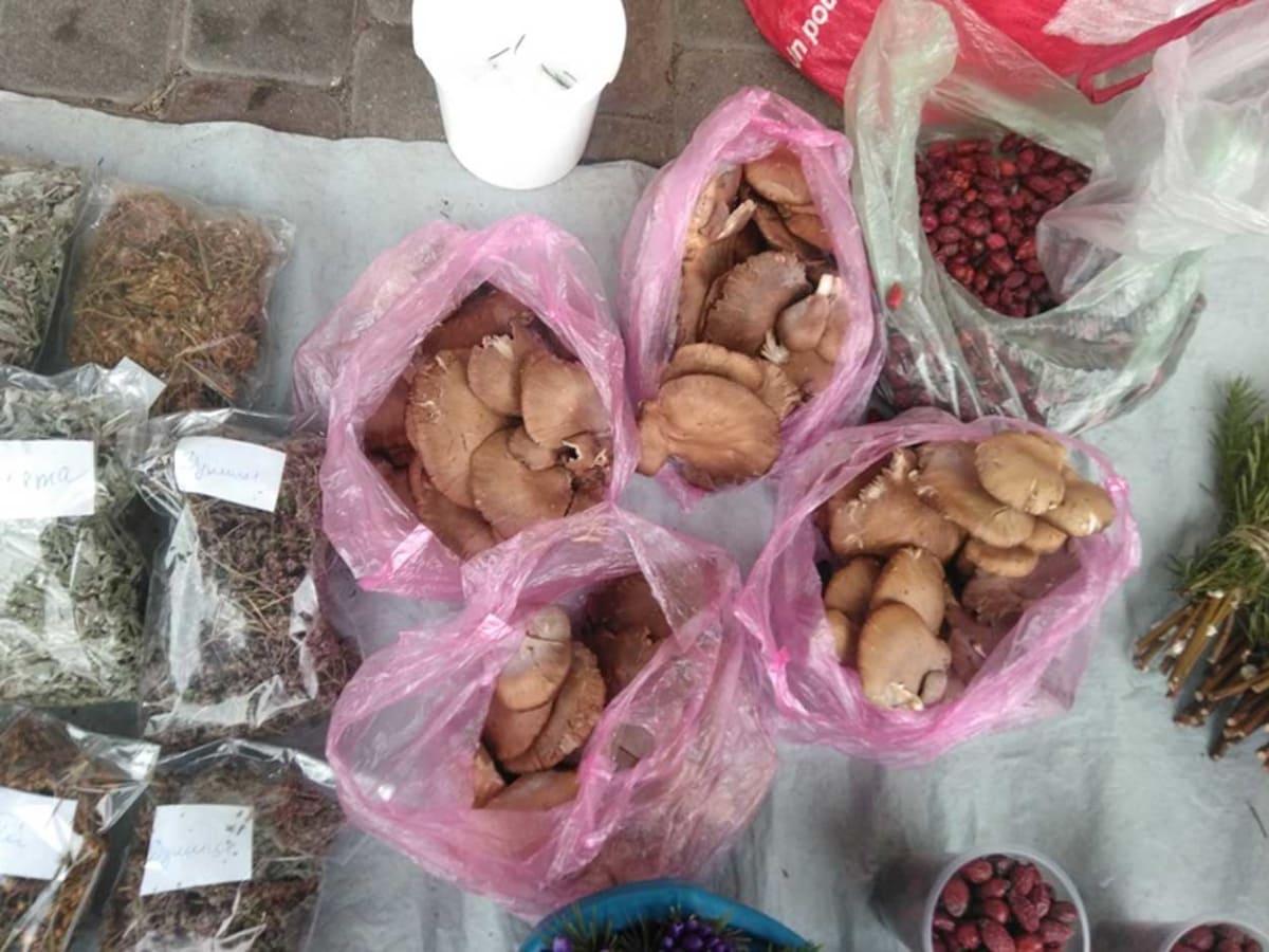 В Ужгороді вже продають лісові гриби фото