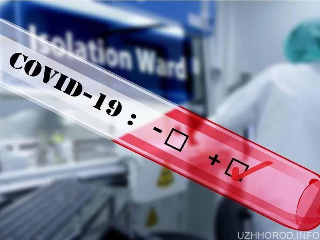 Для розробки і випробування вакцини від COVID-19 треба не менше року фото