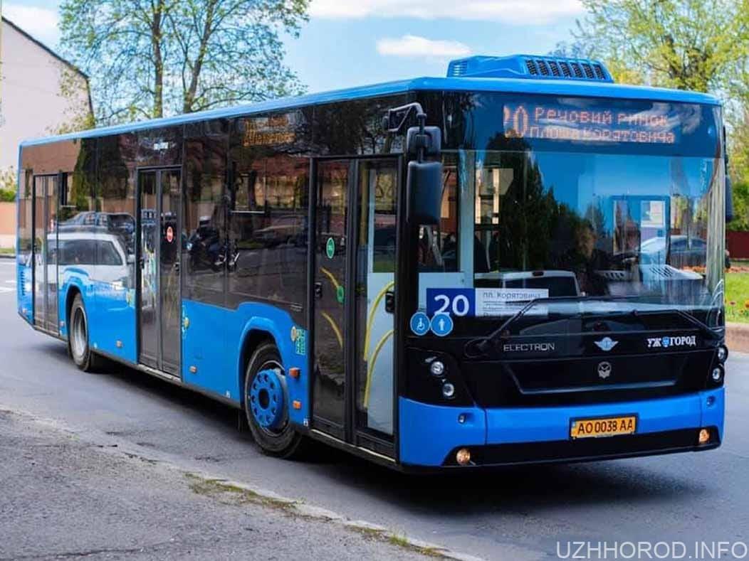 Графік руху автобусів для перевезення медиків фото