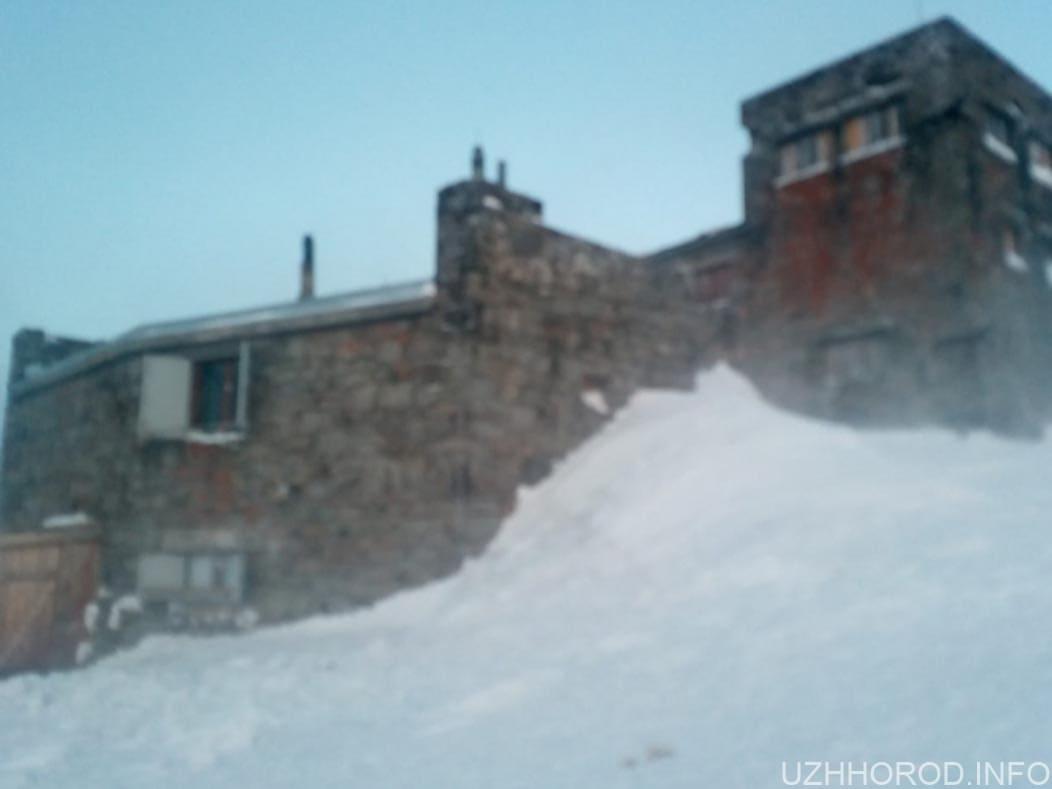 погода Карпати сніг фото