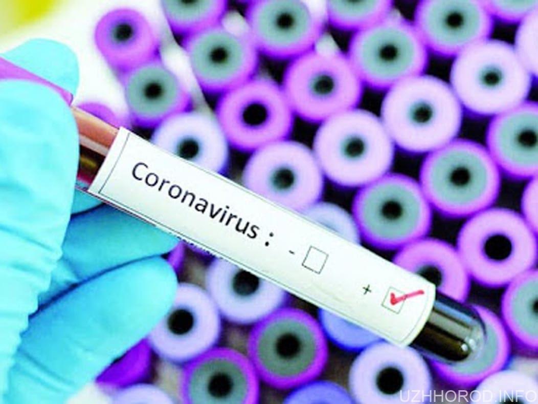 У шістьох людей на Закарпатті підозрюють коронавірус фото