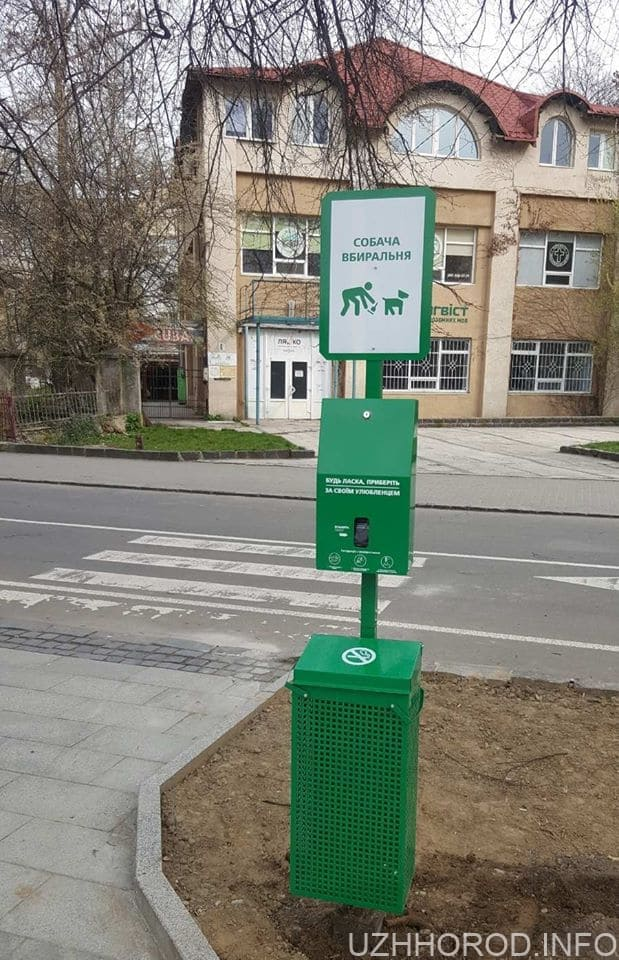 В Ужгороді встановили спеціальні станції для прибирання за собаками фото