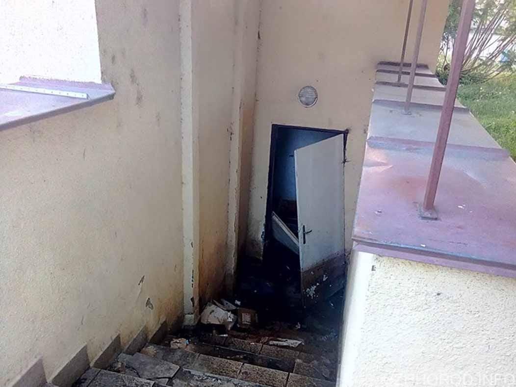 Закарпатська митниця оголосила тендер на реконструкцію туалетів фото