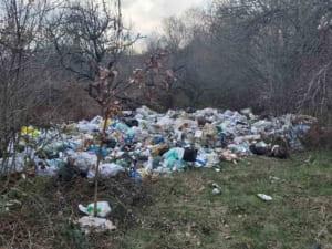 Сміття з мікрорайону Ужгорода вивозять до сіл?