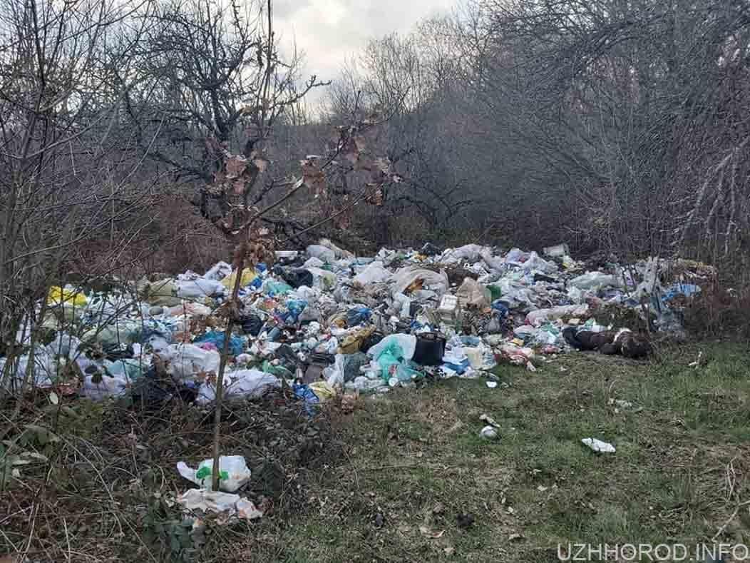 Сміття з мікрорайону Ужгорода вивозять до сіл фото