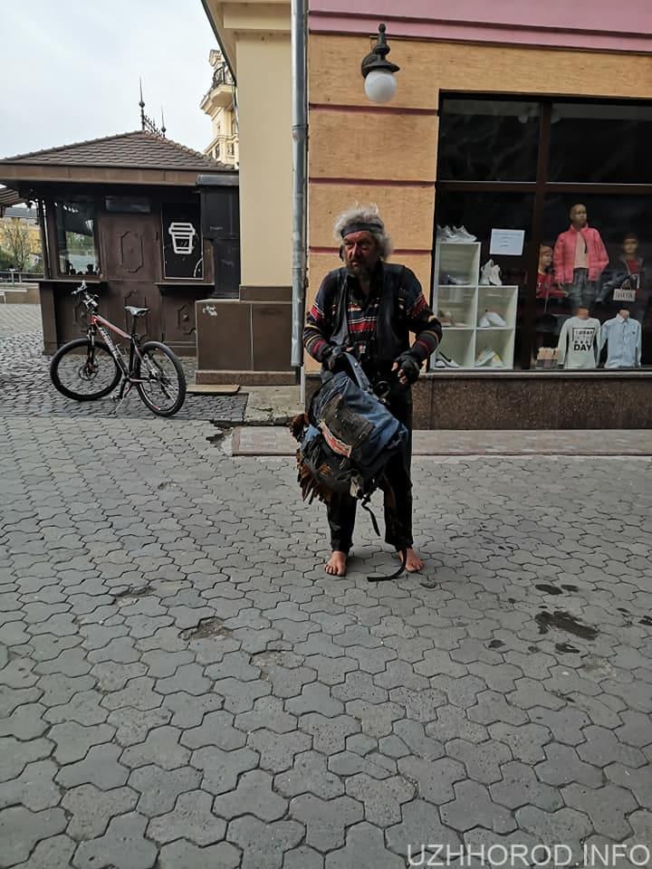 В Ужгороді чоловік пошкодив квітник та гірлянду на пішохідному мості 2 фото