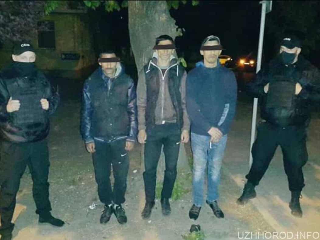 В Ужгороді затримали серійних грабіжників фото