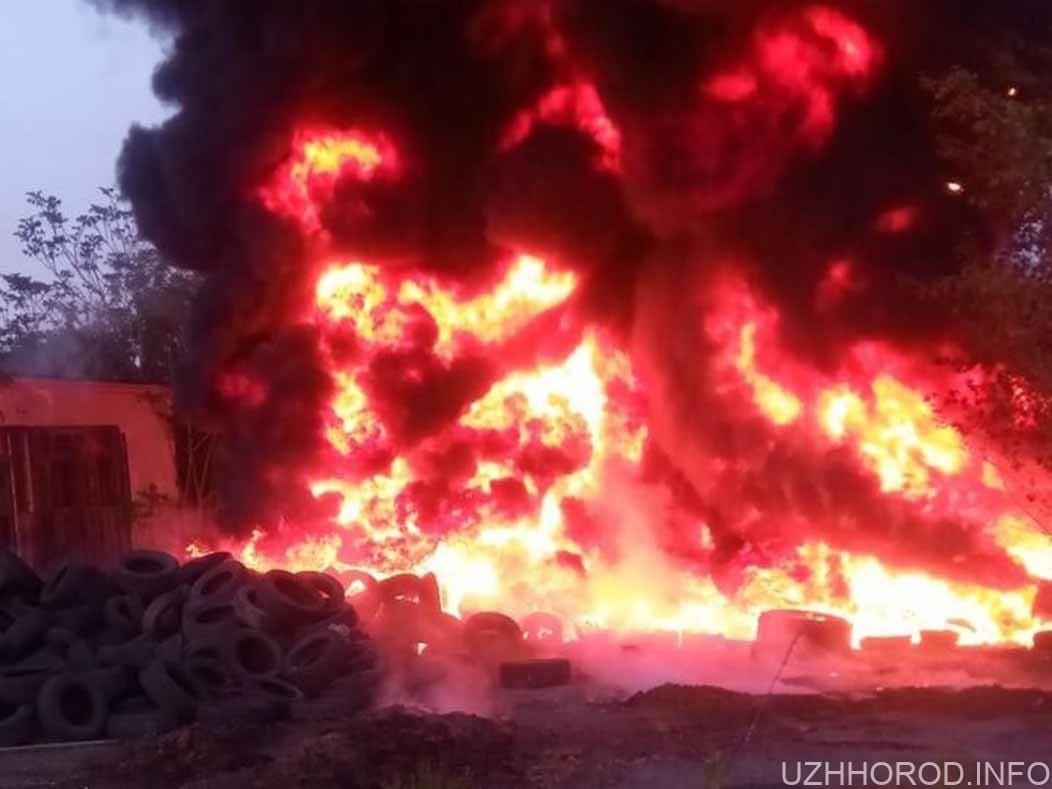 Деталі про пожежу вчора від Управління ДСНС фото