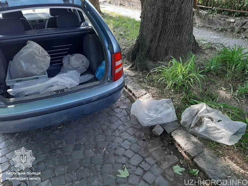 Патрульні впіймали крадія бруківки фото