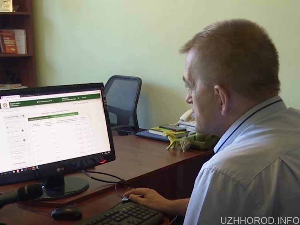 онлайн пенсія фото