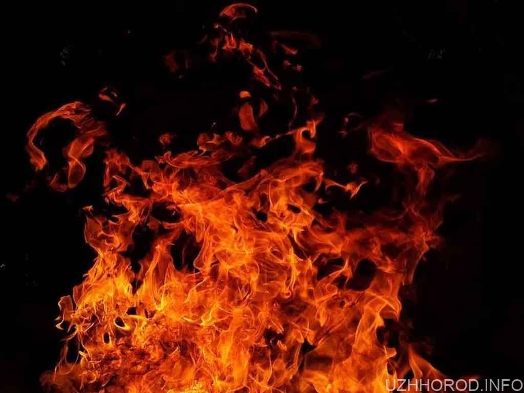 пожежа вогонь фото