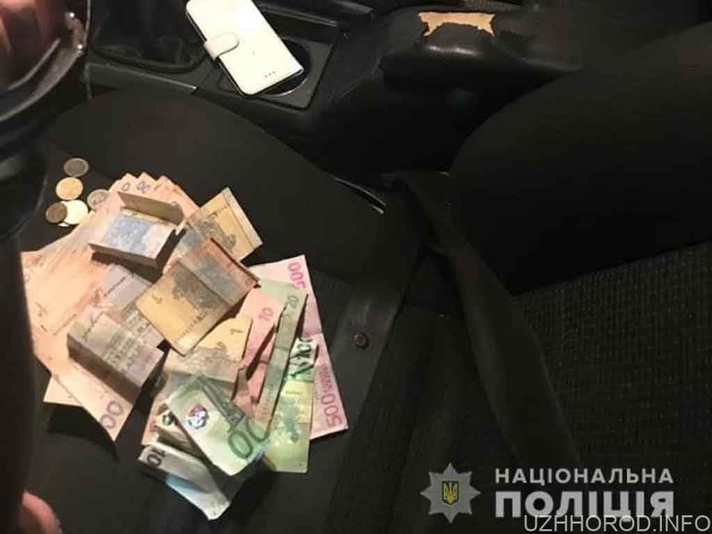 Громадяни Словаччини обікрали 59 річну жінку фото