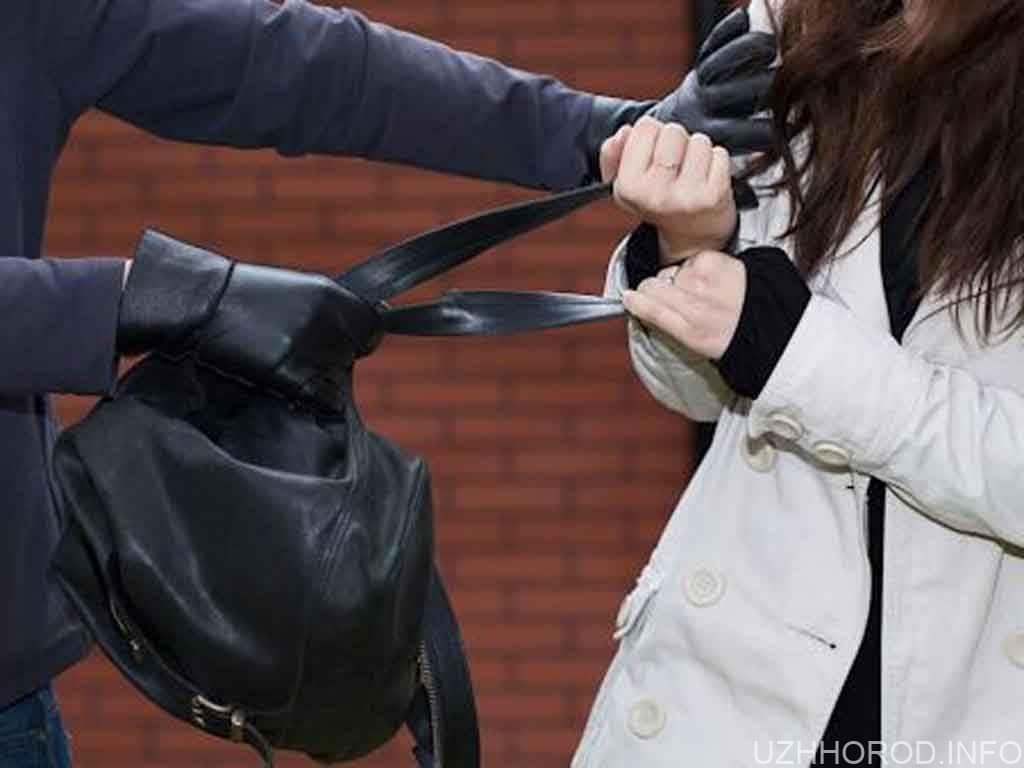злодій крадіжка жінка фото