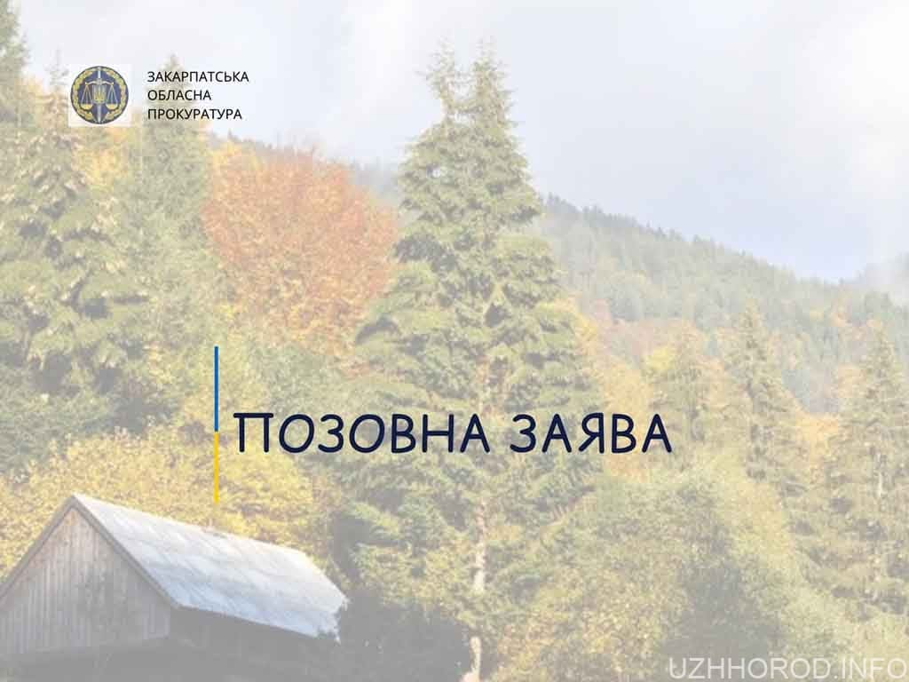 Вимога стягнення 600 тисяч гривень збитків за порушення лісового законодавства