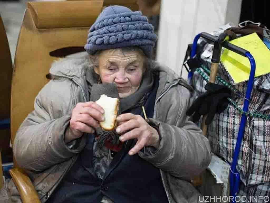 Благодійна справа: ужгородці у Новий рік годуватимуть безхатьків
