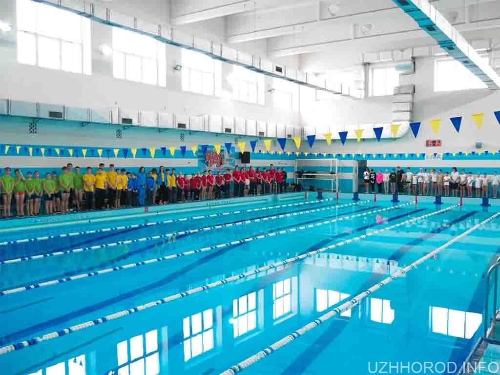 чемпіонат плавання фото