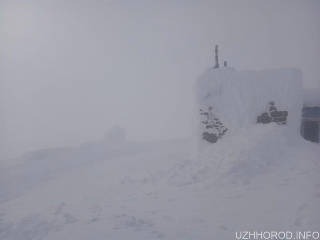 Карпати сніг зима фото
