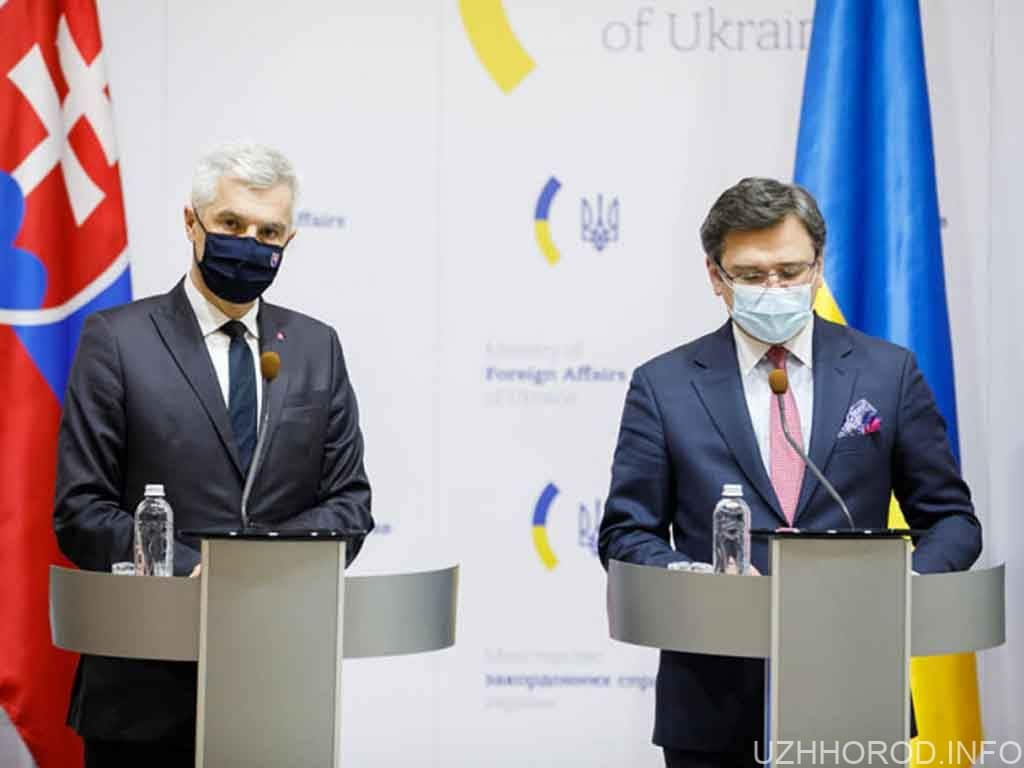 """Словацький міністр вибачився за жарт про """"обмін Закарпаття на вакцину"""""""