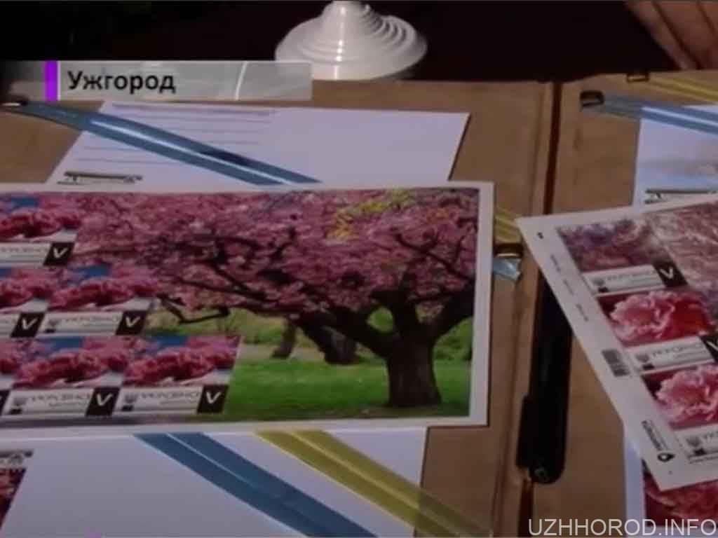 Ужгородська сакура – на поштовій марці (ВІДЕО)