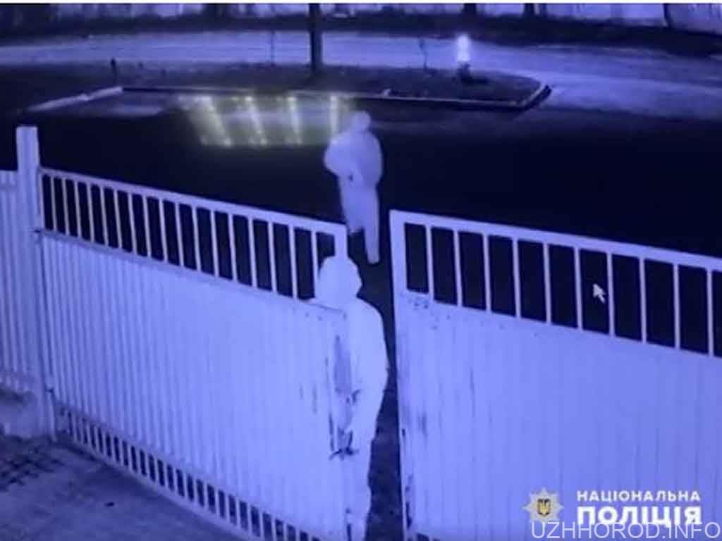 Розбійний напад у Мукачеві: Злочинці зв'язали охоронця і викрали 300 тис. грн (ВІДЕО)