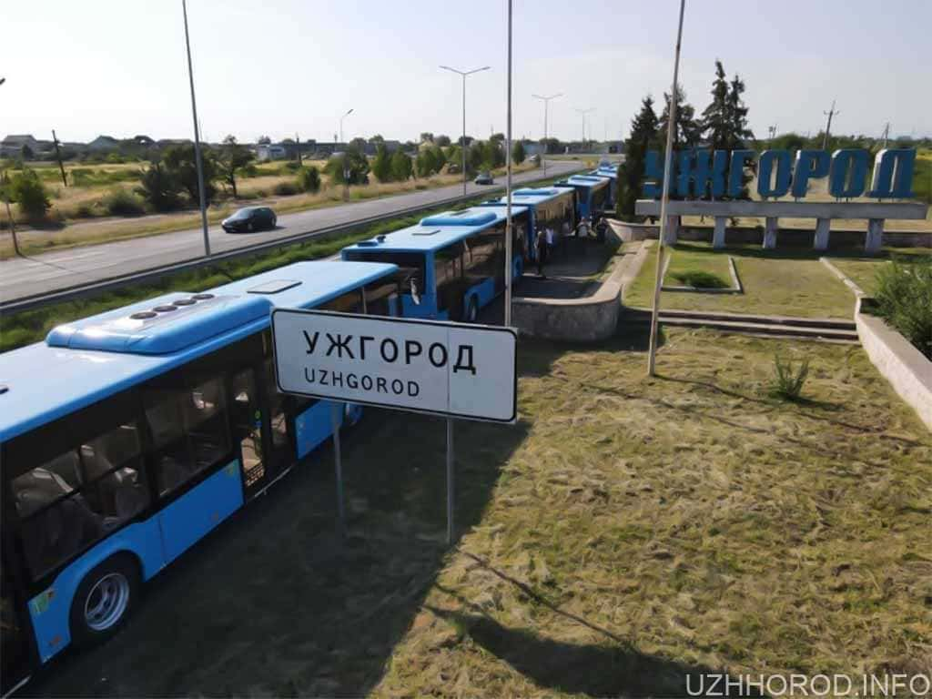 автобуси прибули в Ужгород фото