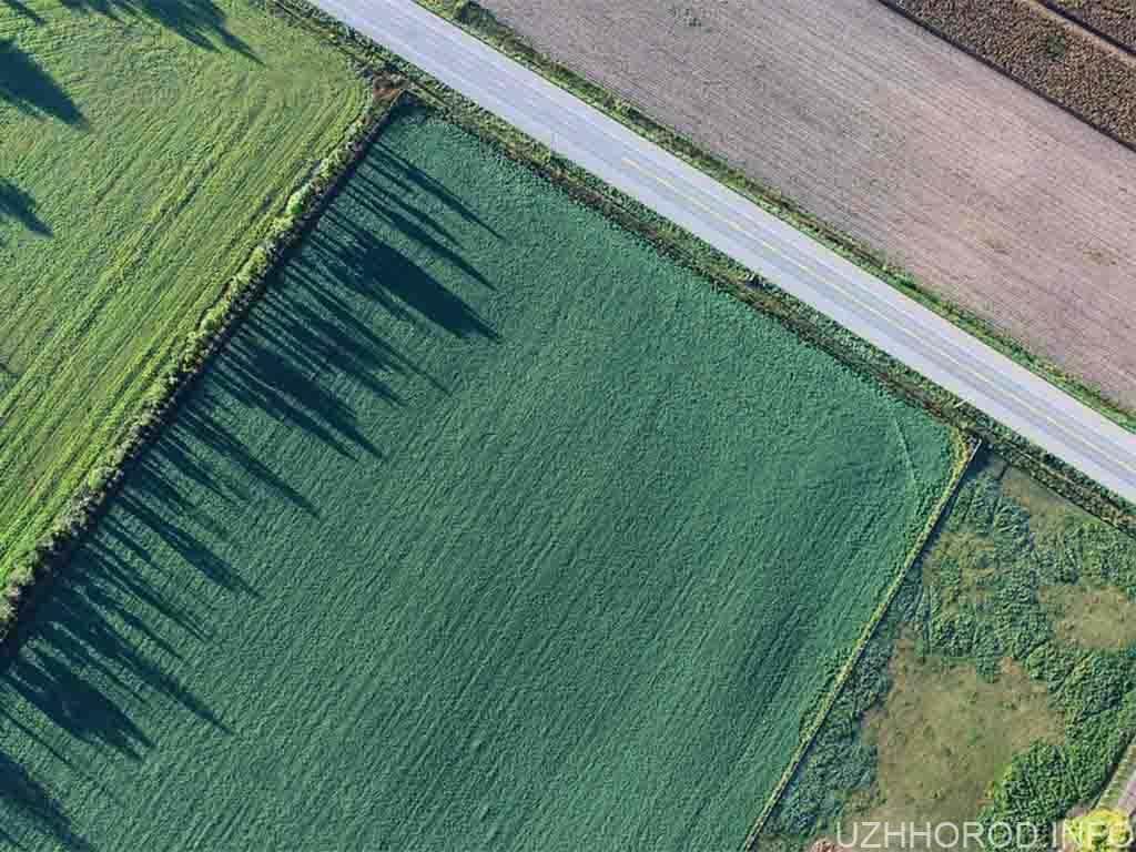 Власники земельних ділянок або паїв, які не оформлять на них право власності до 2025 року, втратять їх, – Мін'юст